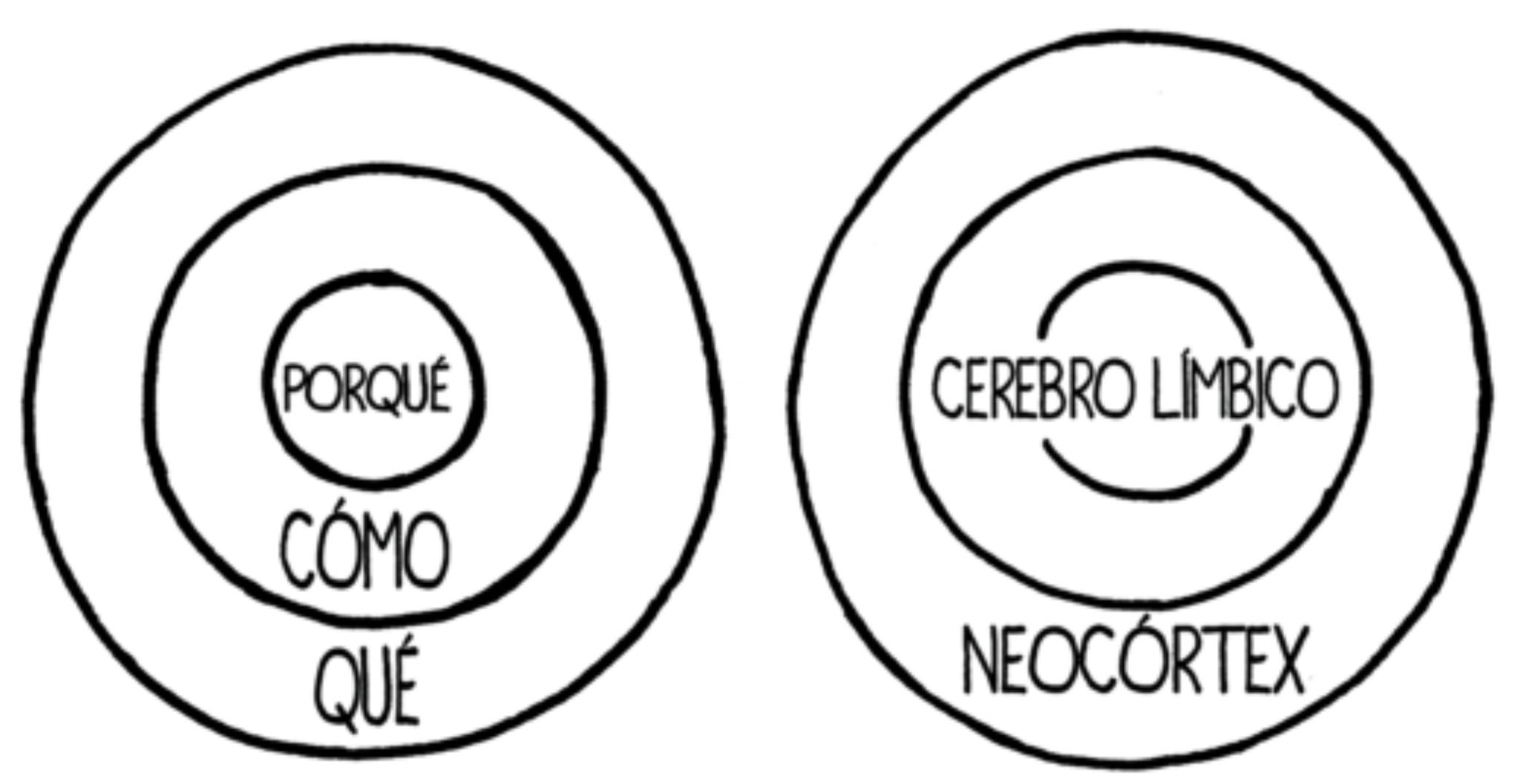 the golden circle pedro puyol